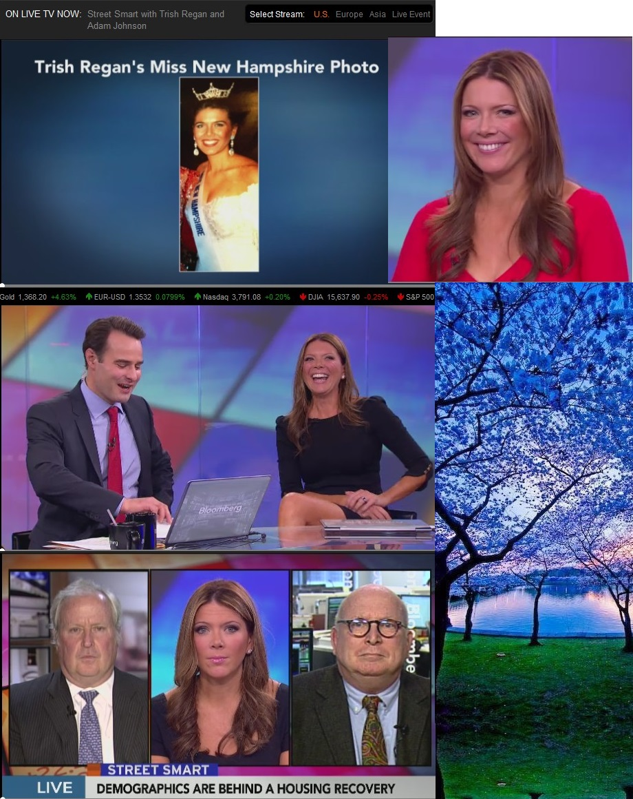 BLOOMBERG TRISH REGAN MISS NEW HAMPSHIRE 01 200913
