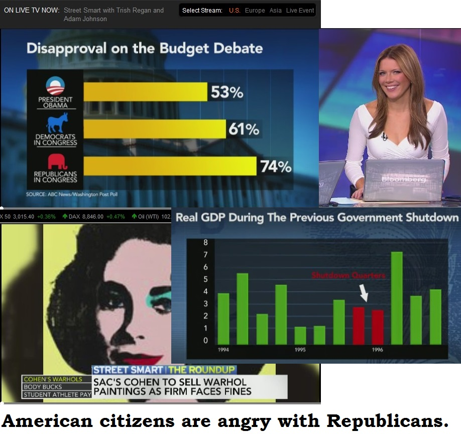 BLOOMBERG SHUTDOWN DISAPPROVAL ON THE BUDGET DEBATE 02 161013